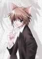 Neko boy - anime-animal-guys photo