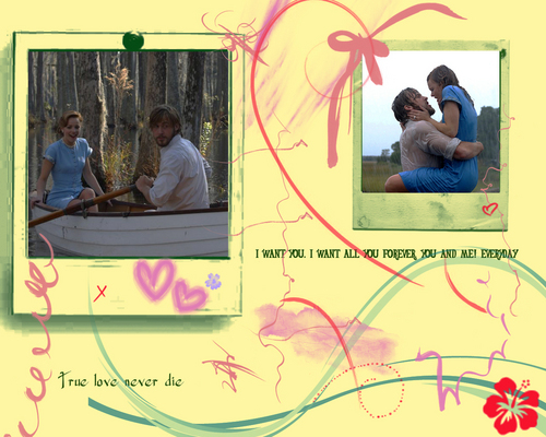 The Notebook wallpaper probably containing a diner, a sign, and a street titled The notebook wallpaper