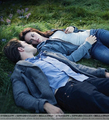 Two New Stills :D - twilight-series photo