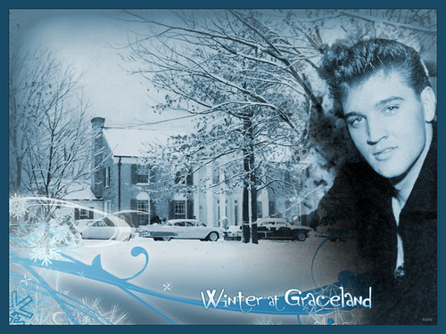 Elvis Presley wallpaper probably with a snowbank titled Winter at Gracelands