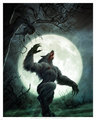 howl of the werewolf