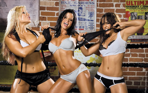 Candice Michelle پیپر وال with a bikini called Flex Magazine - Layla, Candice and Beth