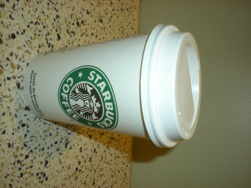 star, sterne bucks lover