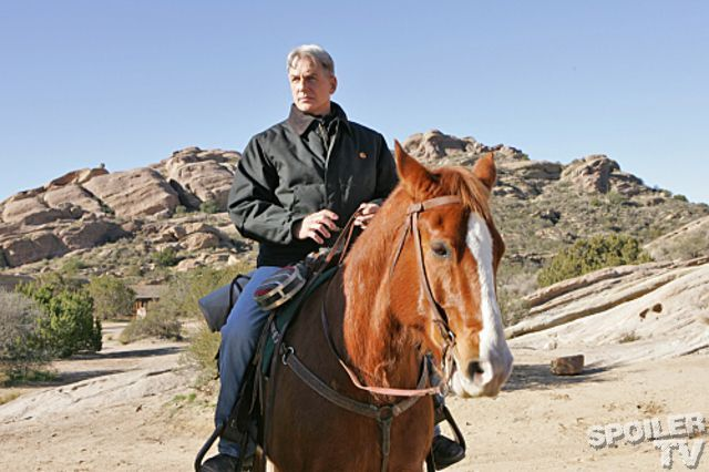 NCIS South by Southwest Gibbs Horse