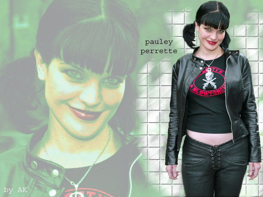 http://images2.fanpop.com/images/photos/3900000/Abby-abby-sciuto-3988729-1024-768.jpg