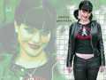 Abby - abby-sciuto wallpaper
