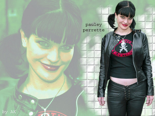 Abby Sciuto wallpaper possibly containing a leisure wear, an outerwear, and a top entitled Abby