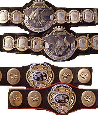 All-Japan & PWF Tag Team Champions