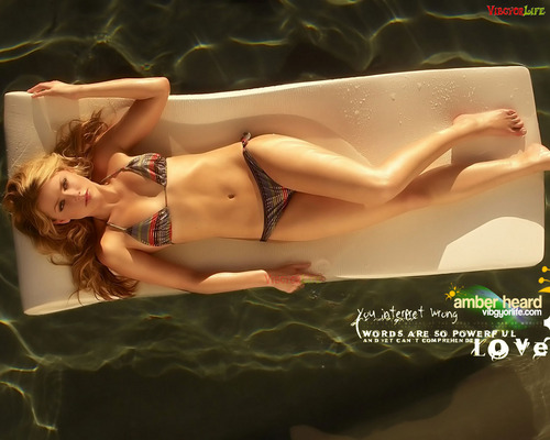 amber heard wallpaper possibly containing a bikini and skin titled Amber :)