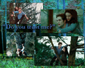 Do you trust me - twilight-series photo