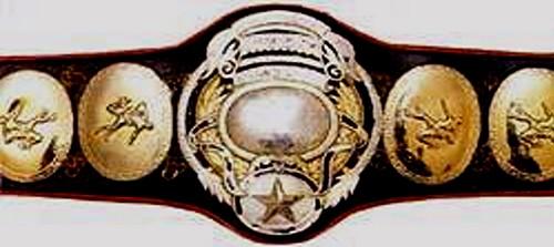 PWF Heavyweight Champion