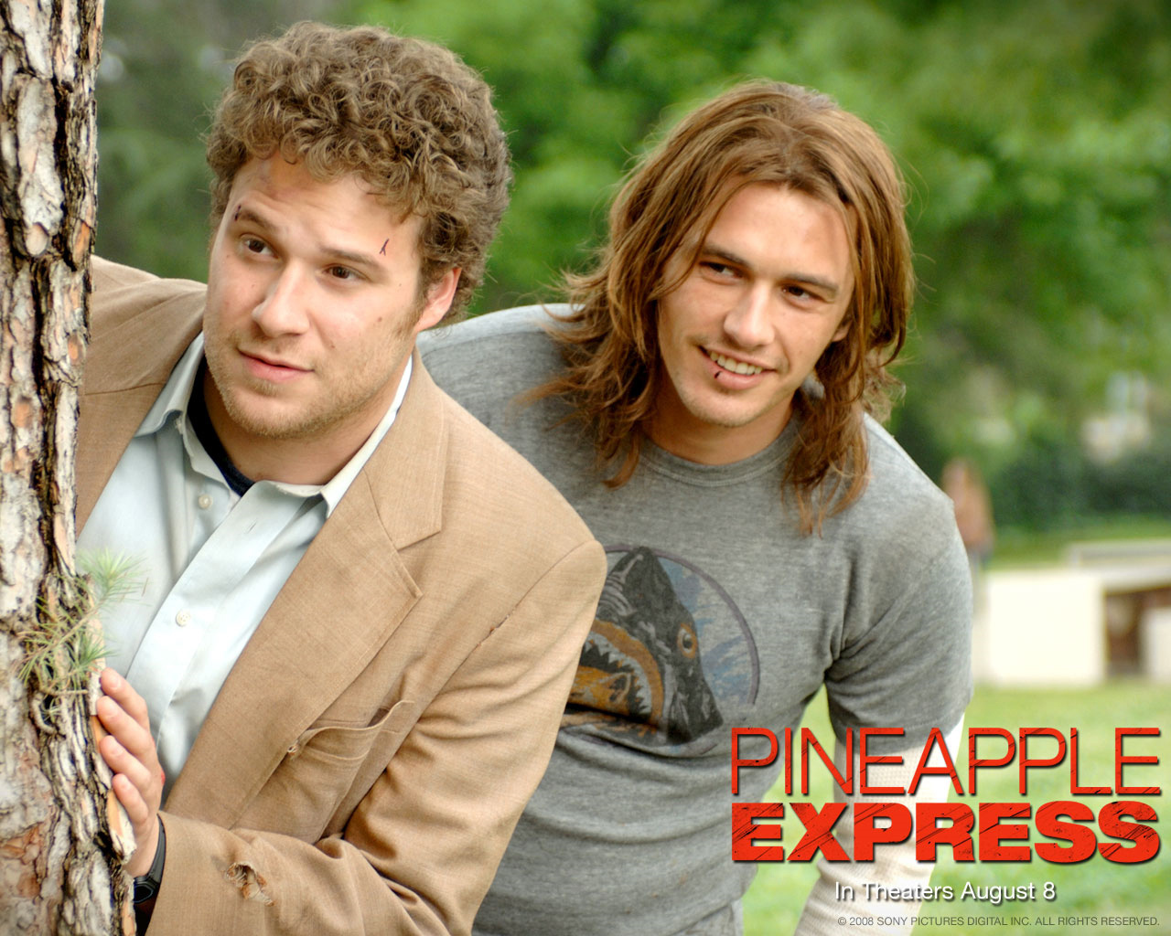 Pineapple Express Wallpaper - Seth Rogen Wallpaper ...