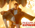 Pineapple Express Wallpaper - seth-rogen wallpaper