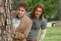 Pineapple Express - seth-rogen photo