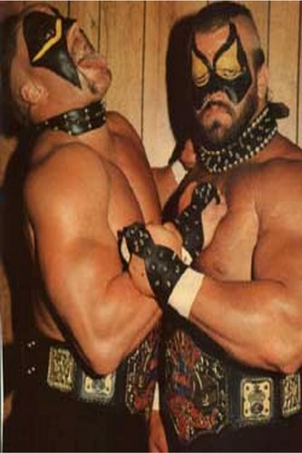 Professional Wrestling Hintergrund titled Road Warriors