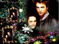 robert-pattinson - Robert & Kristen wallpaper