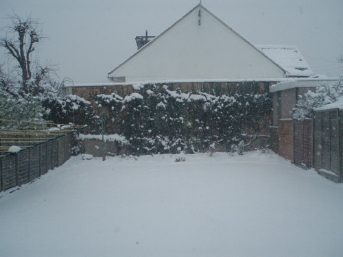 Snow day! 2nd feb 09- London, England!!