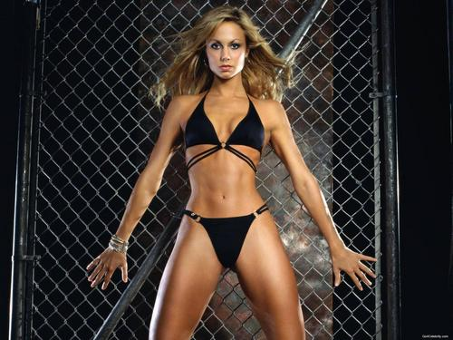 WWE Divas achtergrond with a chainlink fence and a bikini titled Stacy Keibler