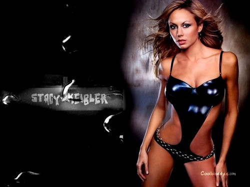 WWE Divas achtergrond probably with a bustier, a swimsuit, and attractiveness entitled Stacy Keibler