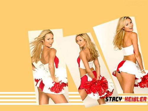 WWE Divas پیپر وال probably with a bikini, attractiveness, and a portrait called Stacy Keibler