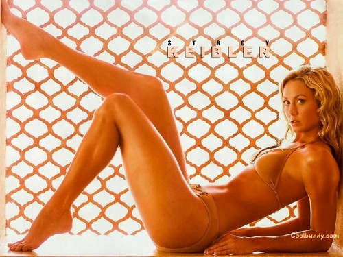 WWE Divas achtergrond with a chainlink fence called Stacy Keibler