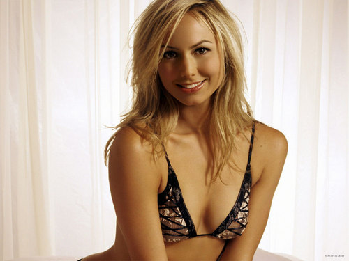 WWE Divas پیپر وال probably containing attractiveness entitled Stacy Keibler