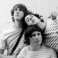 The Wombats - the-wombats photo