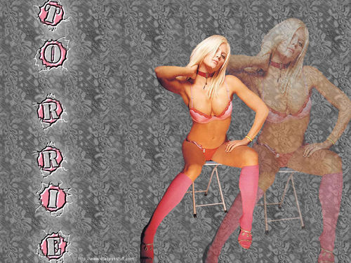 WWE Divas achtergrond probably containing a homp, stoere binken and skin entitled Torrie Wilson