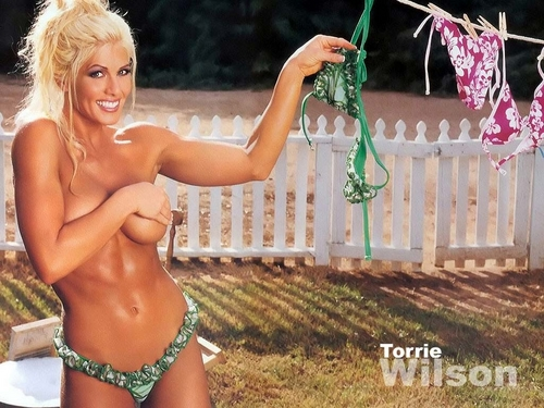 WWE Divas پیپر وال containing skin titled Torrie Wilson