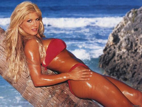 WWE Divas achtergrond possibly with a maillot, a bikini, and a zwempak, badpak entitled Torrie Wilson