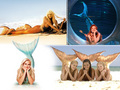 mermaids - mermaids wallpaper