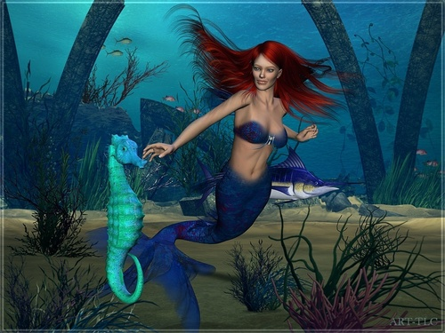 Mermaids images mermaids HD wallpaper and background photos