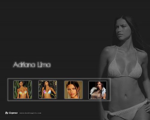 Adriana F Lima