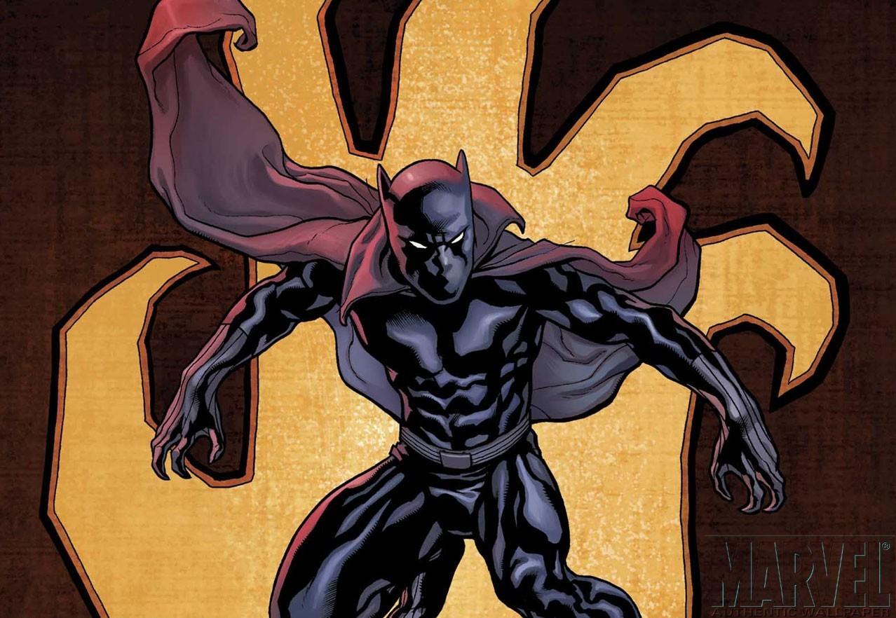 Black Panther Comic Wallpaper: Marvel Comics Photo (4005347)