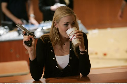 Sarah Walker (Chuck) - female-ass-kickers Photo
