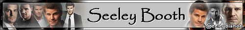 Seeley Booth picha titled Seeley Booth Banner