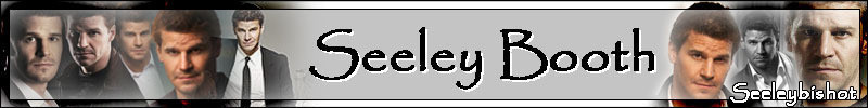 Seeley Booth Banner