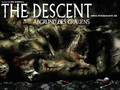 horror-movies - The Descent wallpaper wallpaper