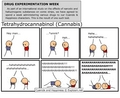 drug experimentation week - cyanide-and-happiness photo