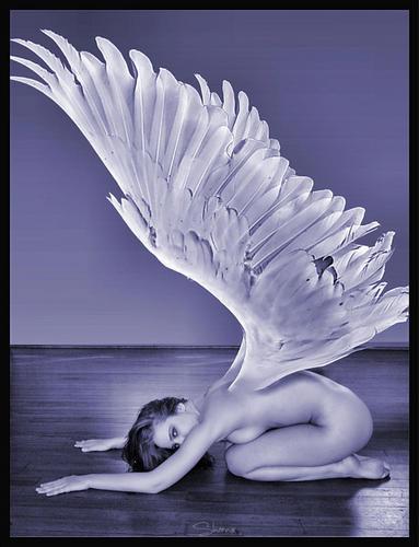 Blue Angel –Jäger der Finsternis