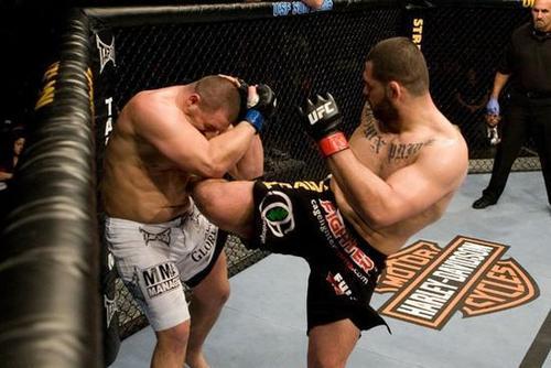 Cain Velasquez vs. Denis Stojnic