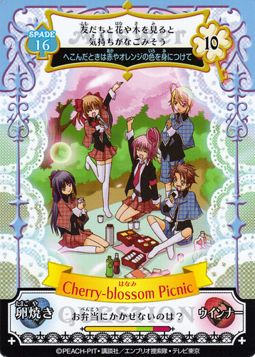 Cherry-blossom Picnic