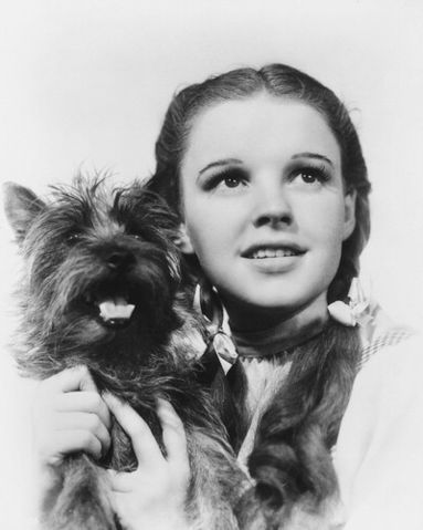 Dorothy and toto - the-wizard-of-oz Photo