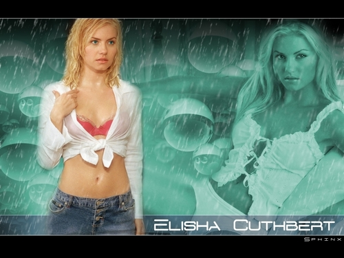 Elisha Cuthbert wallpaper containing attractiveness and a portrait entitled Elisha Cuthbert