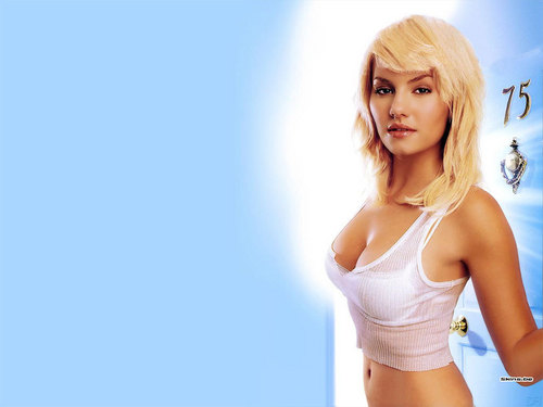 Elisha Cuthbert پیپر وال probably containing attractiveness and a portrait entitled Elisha Cuthbert