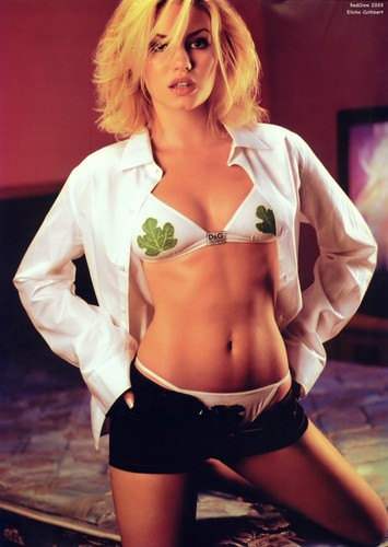 Elisha Cuthbert پیپر وال possibly containing a brassiere entitled Elisha Cuthbert