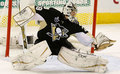 Fleury in Action - marc-andre-fleury photo