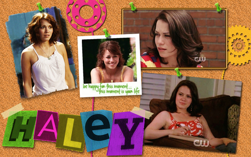 Haley kertas dinding