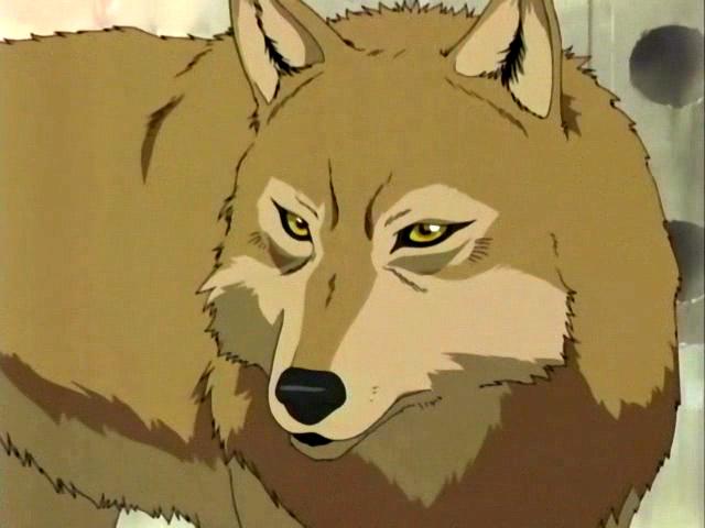 Je veux... Hige-wolfs-rain-4180652-640-480