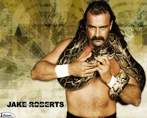 "Jake "" The Snake "" Roberts - Classic WWF"